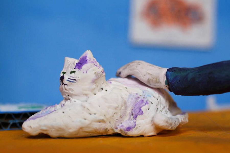 cat clay